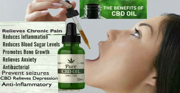 Cannabis Oil Benefits Pure CBD Oil - 10 Proven Health Benefits of CBD Oil