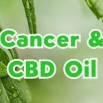 where to buy hemp oil for cancer